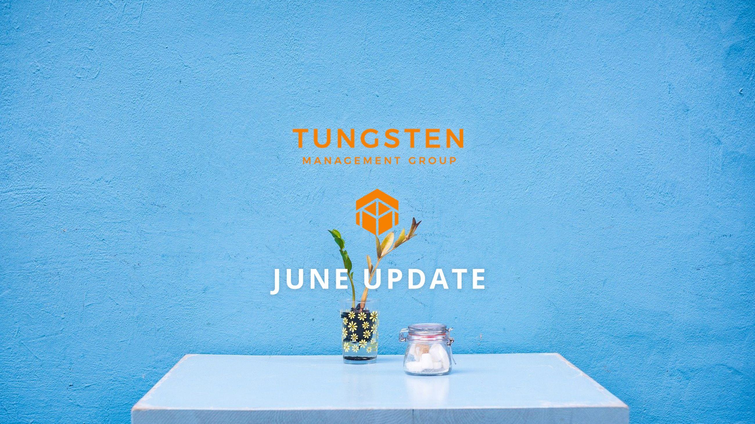 Tungsten Management Group Update Part Thirty One